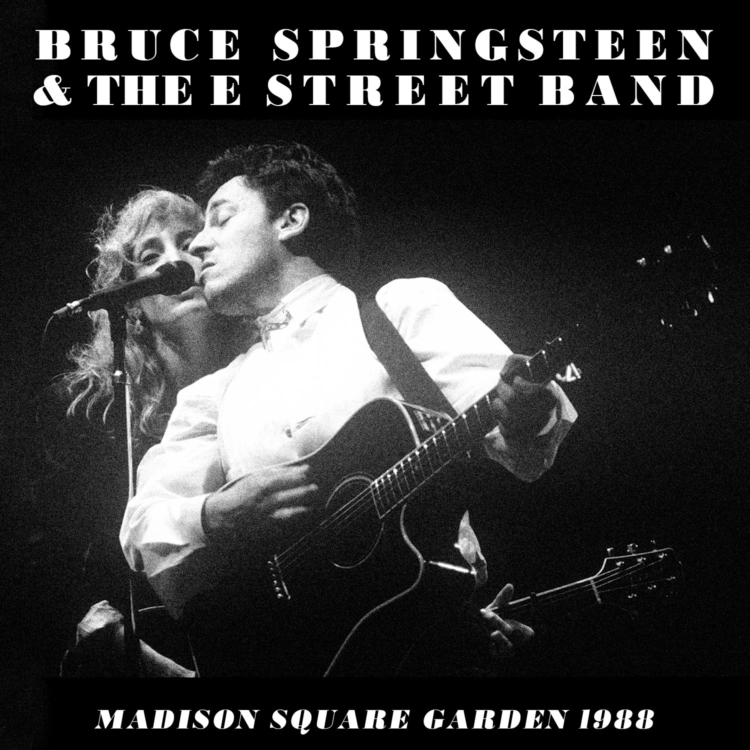Bruce Springsteen Live Concert Cds Downloads